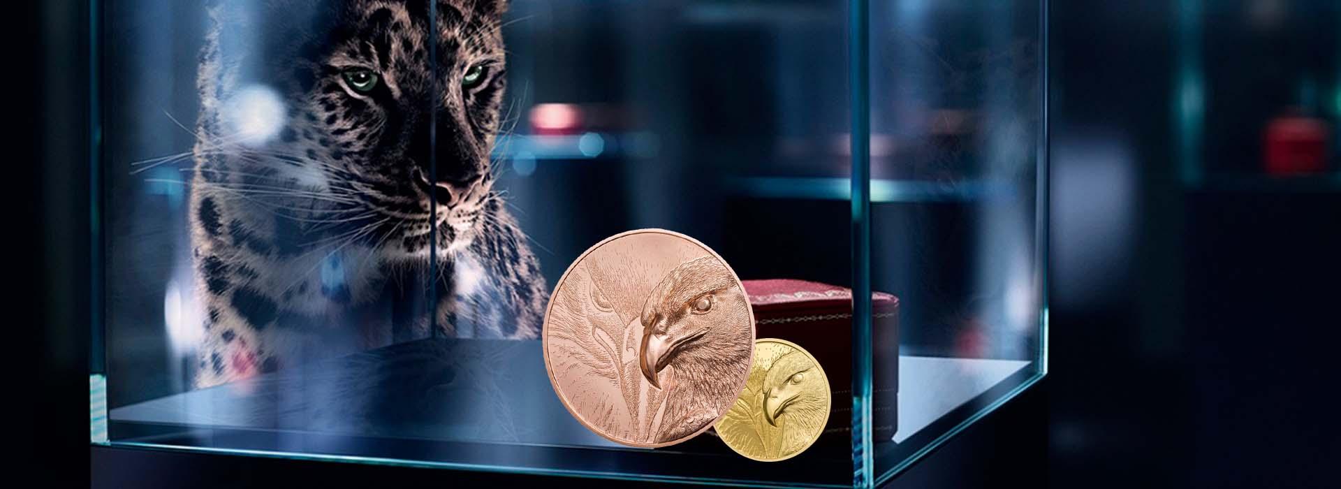 加工定制纪念章-央富金币